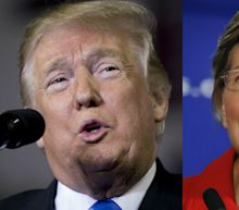 Elizabeth Warren Just Proved She Can't Beat Donald Trump In 2020