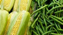 Answers to Your 7 Biggest GMO Questions