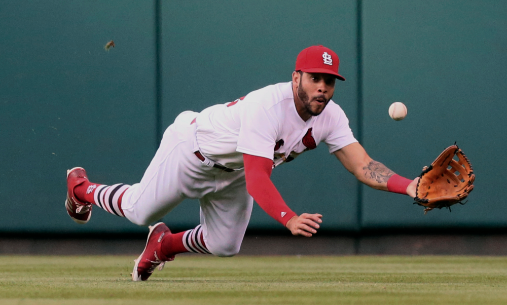 Tommy Pham is catching on in St. Louis
