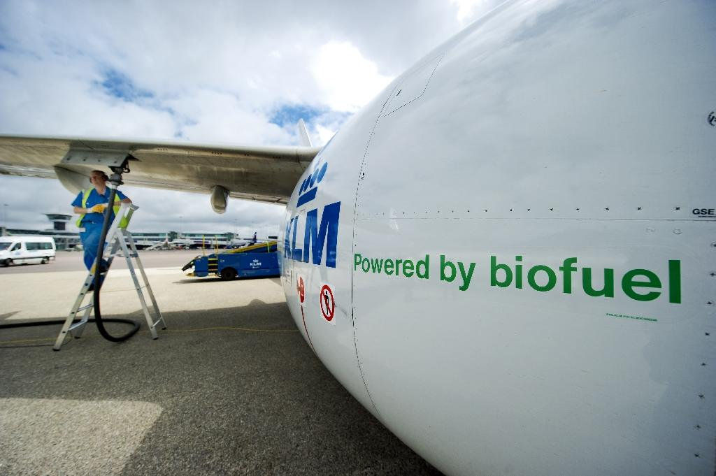 A worker fills a KLM aircraft with deep-frying oil at Schiphol airport on June 29, 2011 (AFP Photo/Robin van Lokhuijsen)