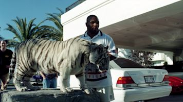 Tyson on how he came to own infamous tigers