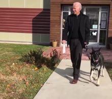 Former Vice President Joe Biden adopts adorable shelter dog