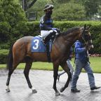 Horse named for Dr. Anthony Fauci finishes second in debut