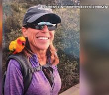 Woman, Dog Reported Missing in Southern California National Forest