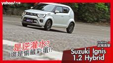 【試駕直擊】是逆灌水還是偷藏彩蛋!?2021 Suzuki Ignis 1.2 Hybrid海灣試駕