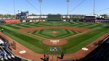 Arizona's Cactus League asks MLB to push back spring training because of COVID-19