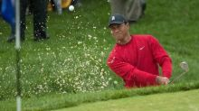 Tiger: I've put together a game from 'nothing'