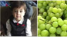Toddler Chokes on Grape — Now, His Family Is Begging Others to Learn First Aid
