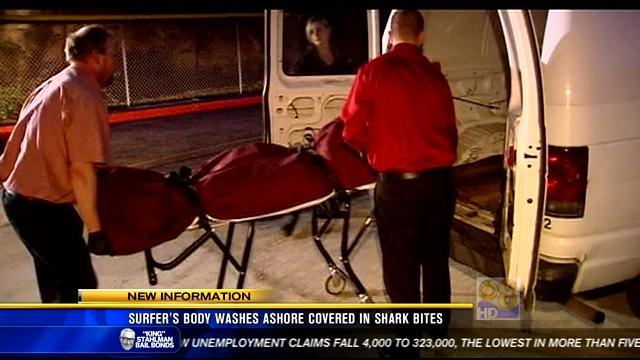Surfer's body washes ashore covered in shark bites