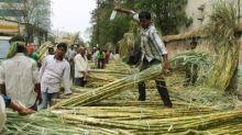 QBengaluru: Sugarcane Farmers Crash Suvarna Soudha; SBI Defrauded