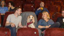 很想要吧?倫敦戲院批准觀眾帶狗入場