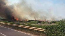 Taranto, in fiamme dieci ettari di macchia mediterranea