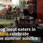 Dog meat traders in China challenged by activists