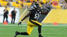REPORT: Steelers release LB Tuzar Skipper