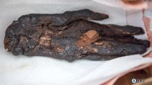 Stolen Mummy Hand Makes Its Way Home