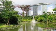 HDB flat buyers would pay 3% more for a greener neighbourhood