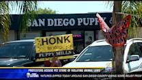 Protesters accuse pet store of violating animal laws