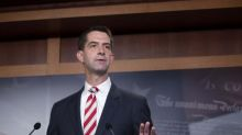 Tom Cotton: US republican calls slavery 'necessary evil upon which this union was built'