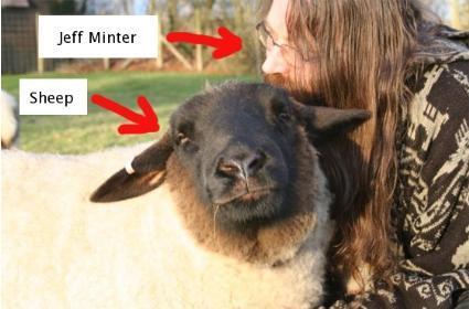 Jeff Minter: artist, developer, friend of sheep