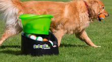 12 gadgets para perros que harán tu vida más fácil