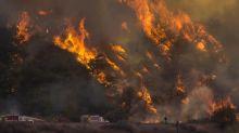 California wildfires: Trump declares major disaster as tens of thousands evacuate