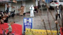 Coronavirus: une seconde ville chinoise placée à l'isolement