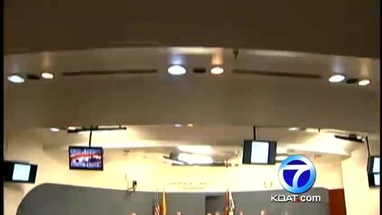 APD Protests At City Council