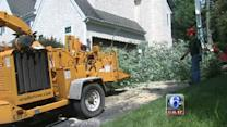 Cleanup continues after Tuesday's storms