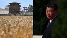 'Logical next step': Australia retaliates against China amid trade tensions
