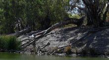 MDBA lashes SA's river commission