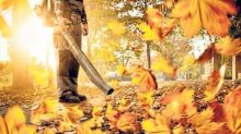 Petrol-powered leaf blowers guzzle petrol and contribute to pollution