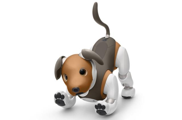 Sony's new Aibo robot looks like a beagle