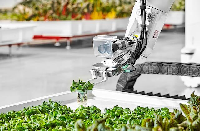 The future of indoor agriculture is vertical farms run by robots
