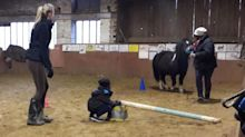 Trappes : des poneys pour améliorer la communication parents-enfants