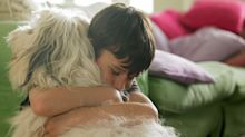 This is why we love dogs so much, according to an expert
