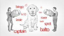 What Naming a Puppy Says About Decision-Making