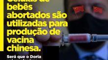 #Verificamos: É falso que CoronaVac seja produzida a partir de 'células de bebês abortados'