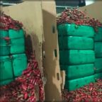 CBP officers seize almost 4 tons of marijuana inside shipment of jalapeño peppers
