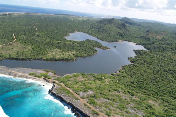 Ancient Caribbean Tsunami Likely Altered Ecosystems