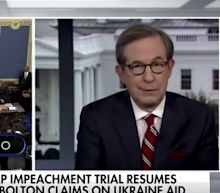 Fox News anchor Chris Wallace tells conservative commentator to get her 'facts straight' in heated exchange over impeachment witnesses