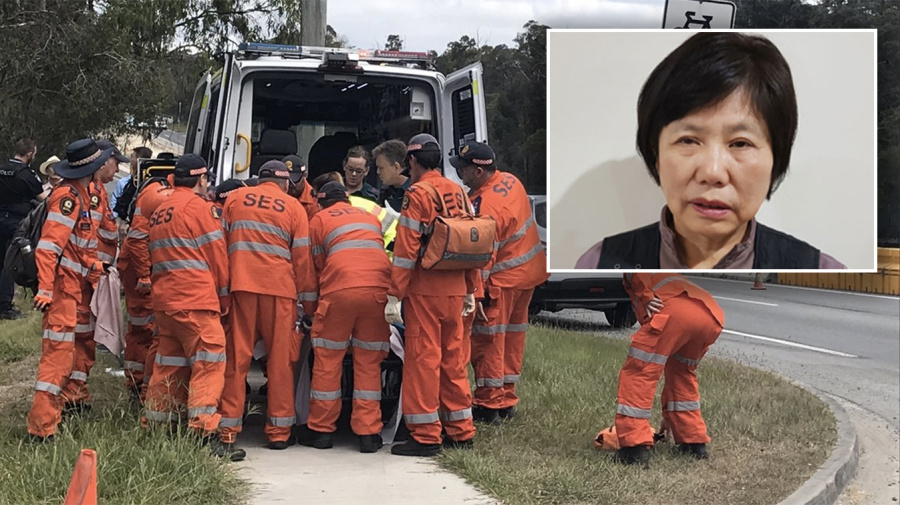 Elderly woman with dementia found after disappearing in bushland