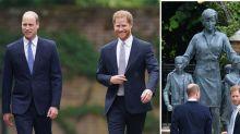 Prince Harry and Prince William reunite to unveil Diana statue