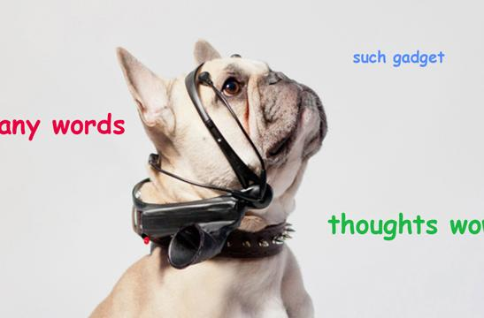 Yes, this is dog: No More Woof aims to translate canine thoughts into human speech