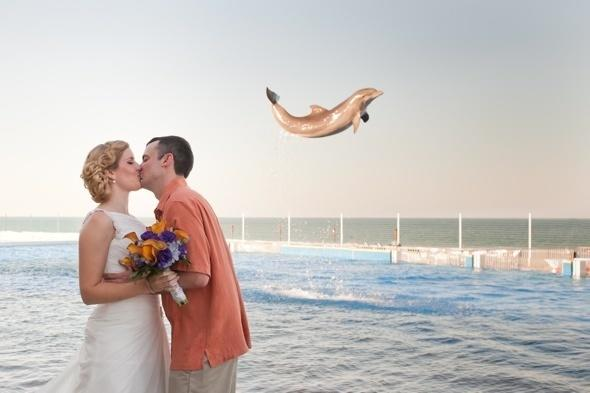 <p>Alexis and Steve Espey got the picture of a lifetime when a 'flying' dolphin photobombed their wedding photoat Marineland Dolphin Adventure in St. Augustine.</p>  <p></p>  <p></p>