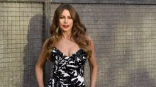 See the stats: Sofia Vergara's staggering success as TV's highest-paid-actress-turned-businesswoman