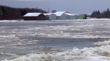 Heavy flooding prompts evacuation anxiety in Newfoundland