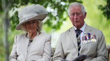 Prince Charles says coronavirus reminded us 'heroes are all around' in poignant Remembrance Sunday message