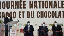 Côte d'Ivoire: le cacao s'invite dans la présidentielle