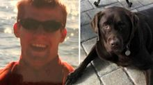 Man dies a day after alligator mauls his service dog