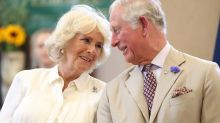 Prince Charles and Camilla share stunning picture on royal wedding anniversary - see it here